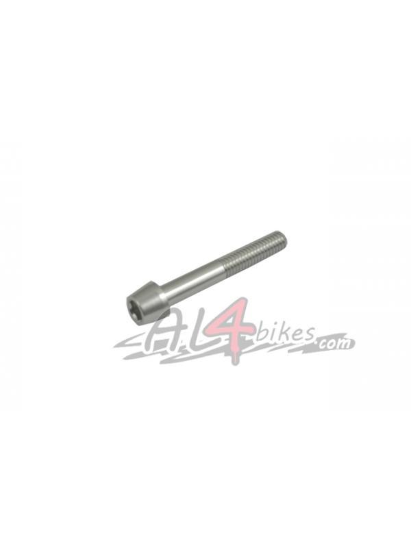 TORNILLO TAPON DIRECCION ALUMINIO PLATA - Tornillo en aluminio para el tapón de potencia
